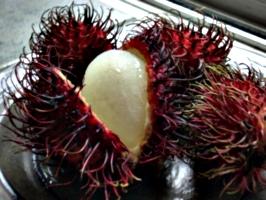 [picture: Rambutan Fruit 2]