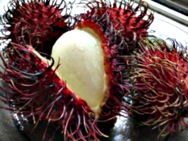 [picture: Rambutan Fruit 3]