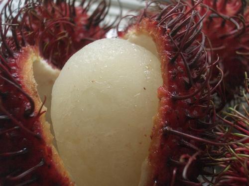 [Picture: Rambutan Fruit 5]