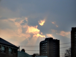 [picture: Sunset over Lauder Avenue 2]