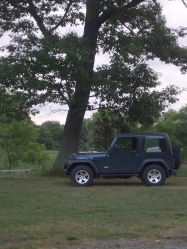 [Picture: Jeep and Tree]