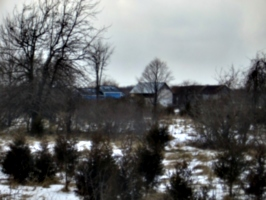 [picture: Our house from our back field 2]