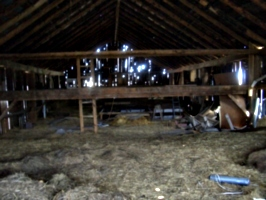 [picture: Inside an old barn 2]