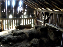 [picture: Inside an old barn 7]