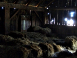 [picture: Inside an old barn 13]
