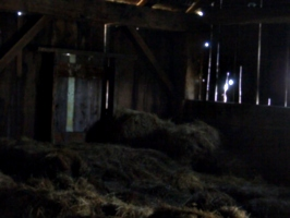 [picture: Inside an old barn 14]