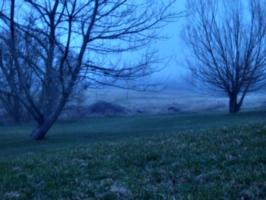 [Picture: Invisible Fog 4]