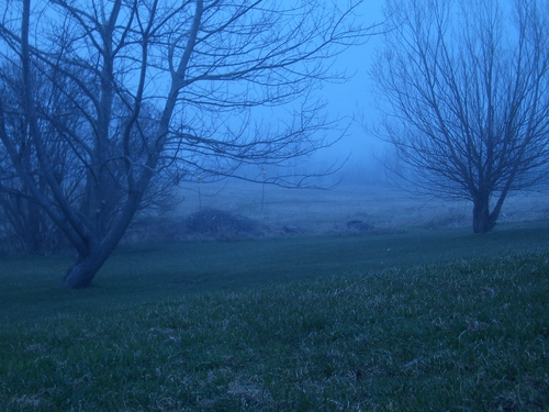 [Picture: Invisible Fog 4]