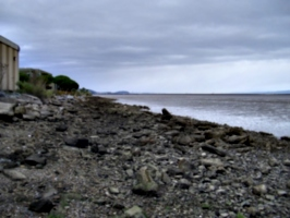 [picture: rocks on the shore 2]