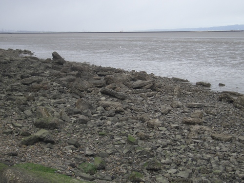 [Picture: rocks on the shore]