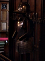 [picture: Coat of armour]