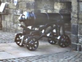 [picture: Cannon]