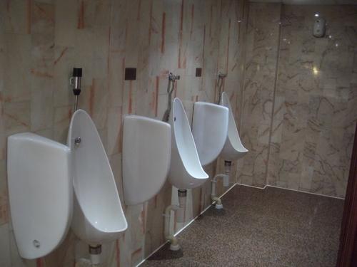 [Picture: toilet]