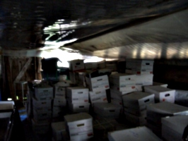 [picture: Boxes in storage]
