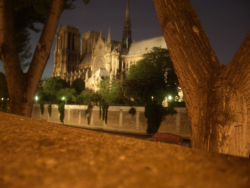 [Picture: Notre Dame at night 4]