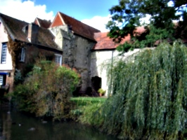 [picture: Old abbey buildings and willow tree]
