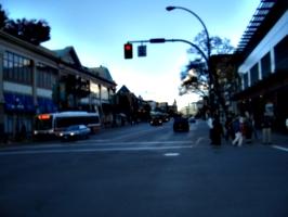 [picture: Road in Victoria 2]