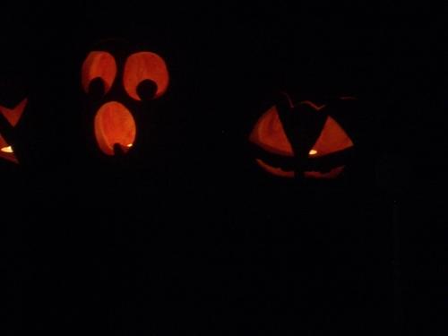 [Picture: Halloween Pumpkins 3]