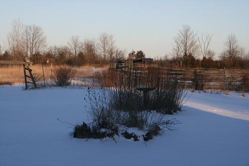 [Picture: After the Snow 1]