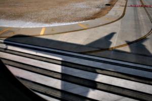 [picture: Landing]