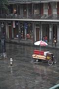 [Picture: Jackson Square in the rain]