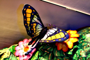 [picture: Another giant butterfly 2]
