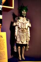 [picture: New Orleans Mardi Gras Costume 1]