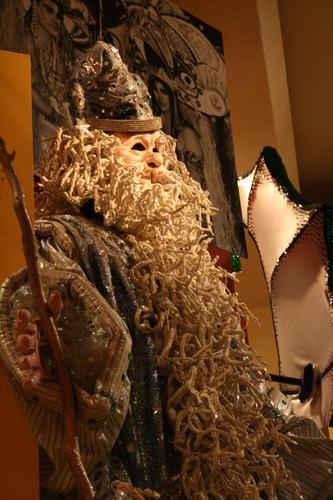 [Picture: Merlin the Wizard Mardi Gras Costume 1]