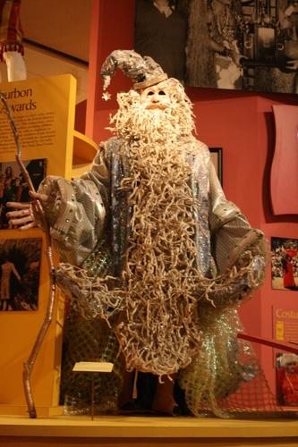 [Picture: Merlin the Wizard Mardi Gras Costume 2]