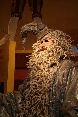 [Picture: Merlin the Wizard Mardi Gras Costume 3]