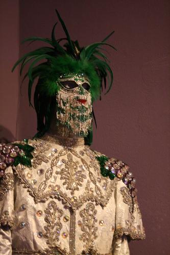 [Picture: New Orleans Mardi Gras Costume 2]