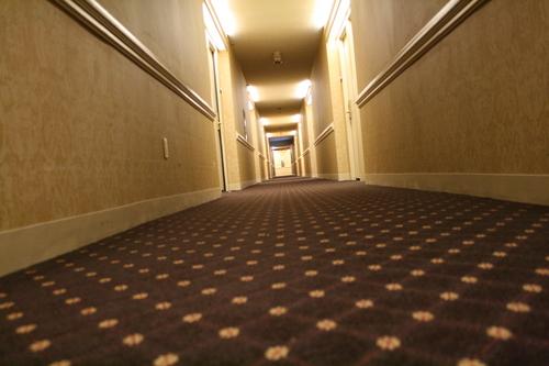 [Picture: Hotel carpet]