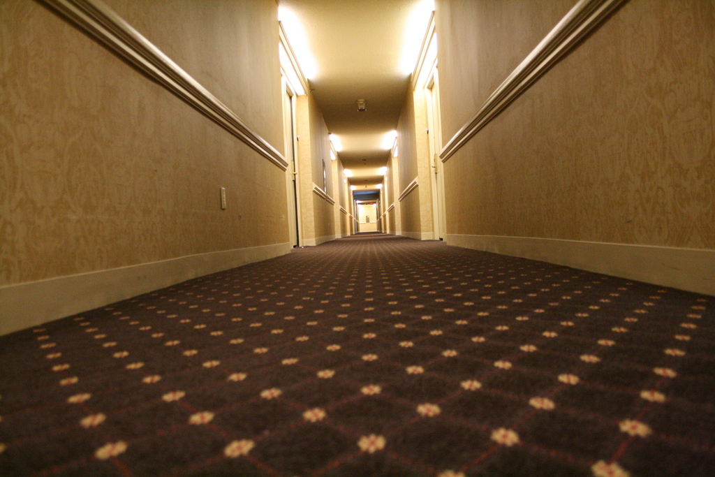 [Picture: Hotel carpet 2]