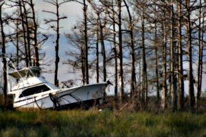[picture: Crashed boat 3]