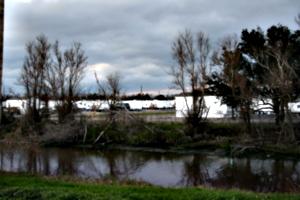 [picture: FEMA Camp 1]