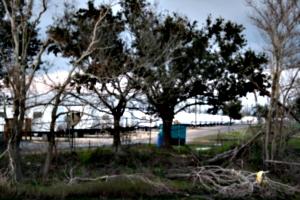 [picture: FEMA Camp 3]