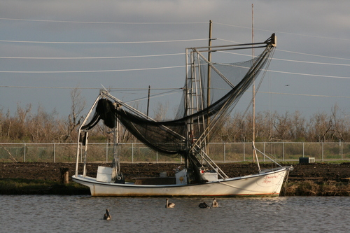 [Picture: Fishing boat]