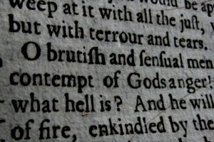[picture: Closeup words 6: O brutish and sensual men, contempt of Gods anger!]