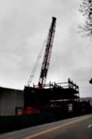 [picture: Crane]