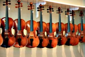 [picture: Violins 2]