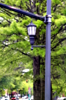 [picture: Lamp-post]