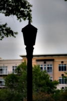 [picture: dark lamp-post 1]