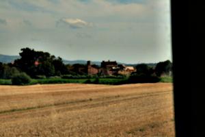 [picture: Italian farm]