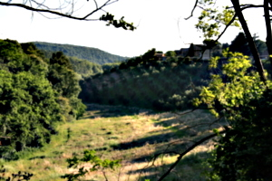 [picture: Tuscan Hillside]