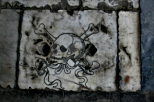 [picture: Stylized Skull and Crossbones 2]