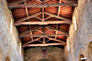 [picture: Basilica 4]