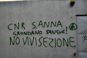 [picture: Graffiti]
