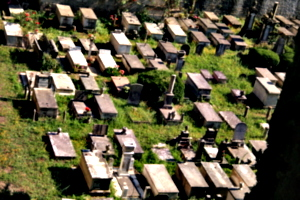 [picture: Jewish Cemetary 3: field of dreams]