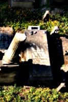 [picture: Jewish Cemetary 14: tombs and pillar]
