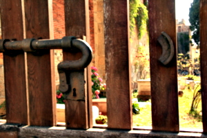 [picture: Jewish Cemetary 36: Locked]